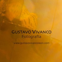 Logo Gustavo Vivanco