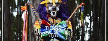 Miniatura Tierra Viva