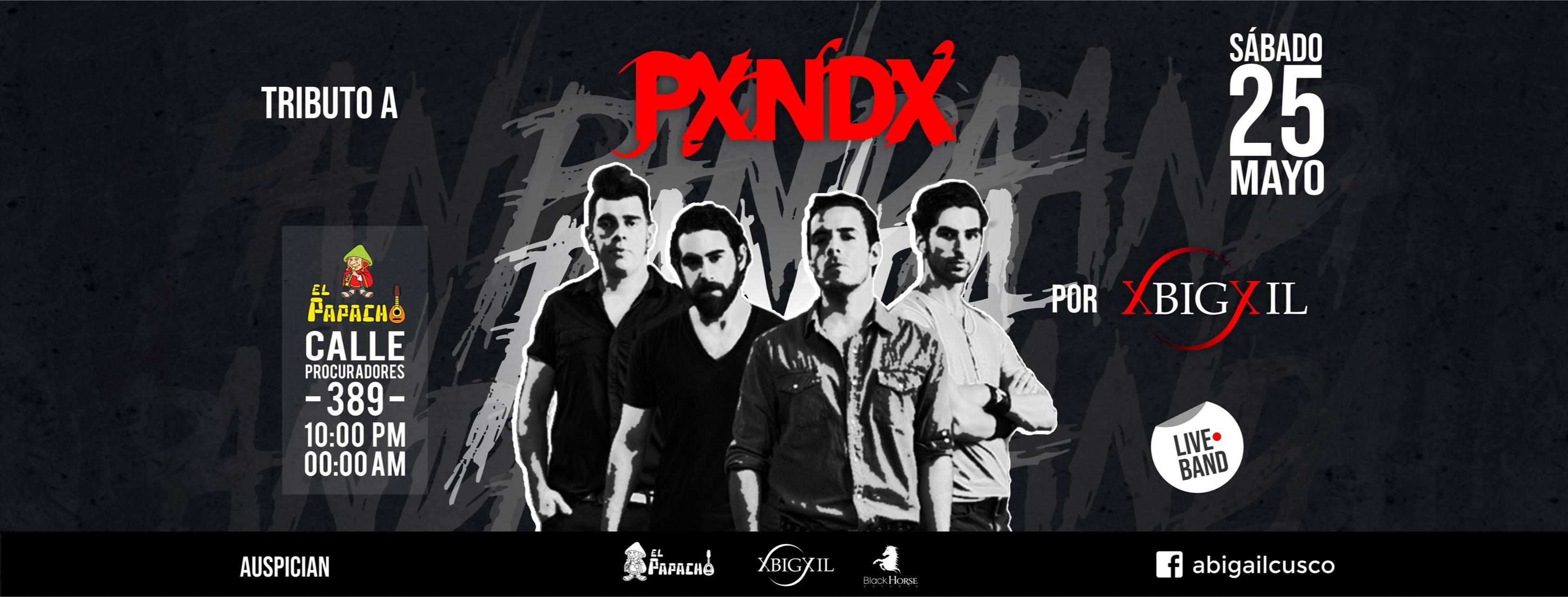 Portada Tributo a PXNDX